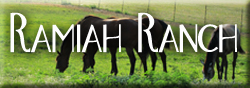 Ramiah Ranch Equine Ministries